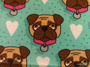 Baumwolljersey Dogs,superniedliche Hunde Schnutten. Wie immer Jersey von Hilco sehr stabil und elastisch, aus 90% Baumwolle, 10% Elastan, 160cm breit. Baumwolljersey wird bei 30°C gewaschen, wir empfehlen Feinwäsche. Ökotex Zertifikat 5532CIT